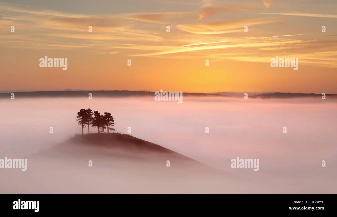 Colmer's Hill, West Dorset, justo antes del amanecer en espesas nieblas otoñales. Imagen De Stock