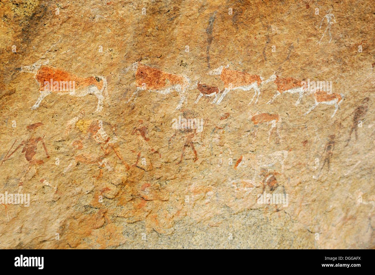 Pintura rupestre de los seres humanos y los animales en el Gorge, Tsisab Brandberg, Damaraland, región Kunene, Namibia Imagen De Stock