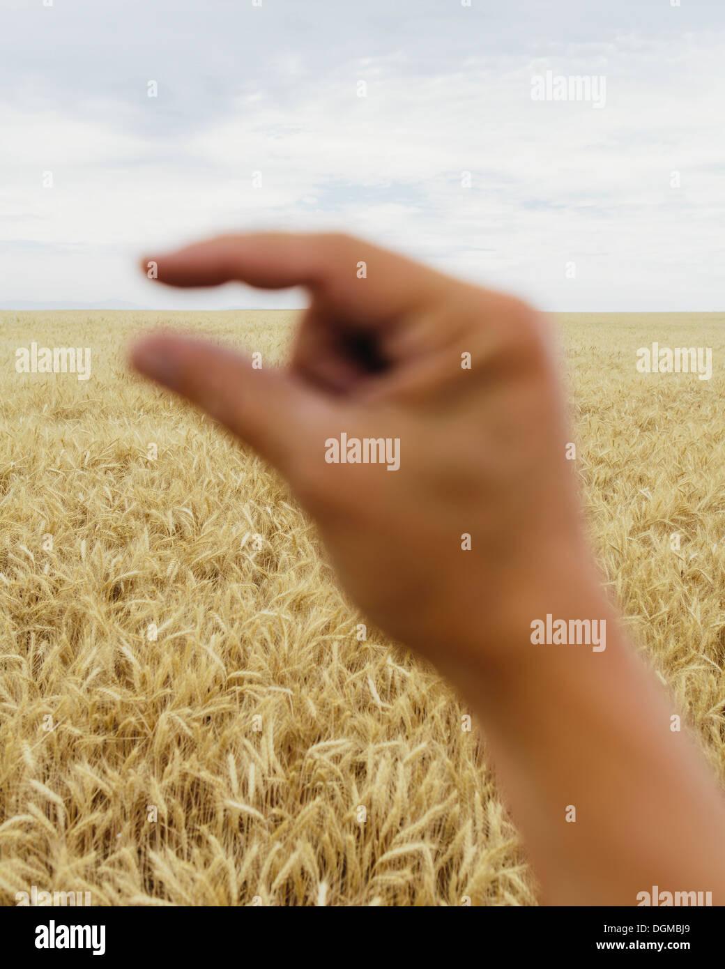 Una mano humana con las puntas de los dedos índice y pulgar juntos. Enmarcando la línea del horizonte Imagen De Stock