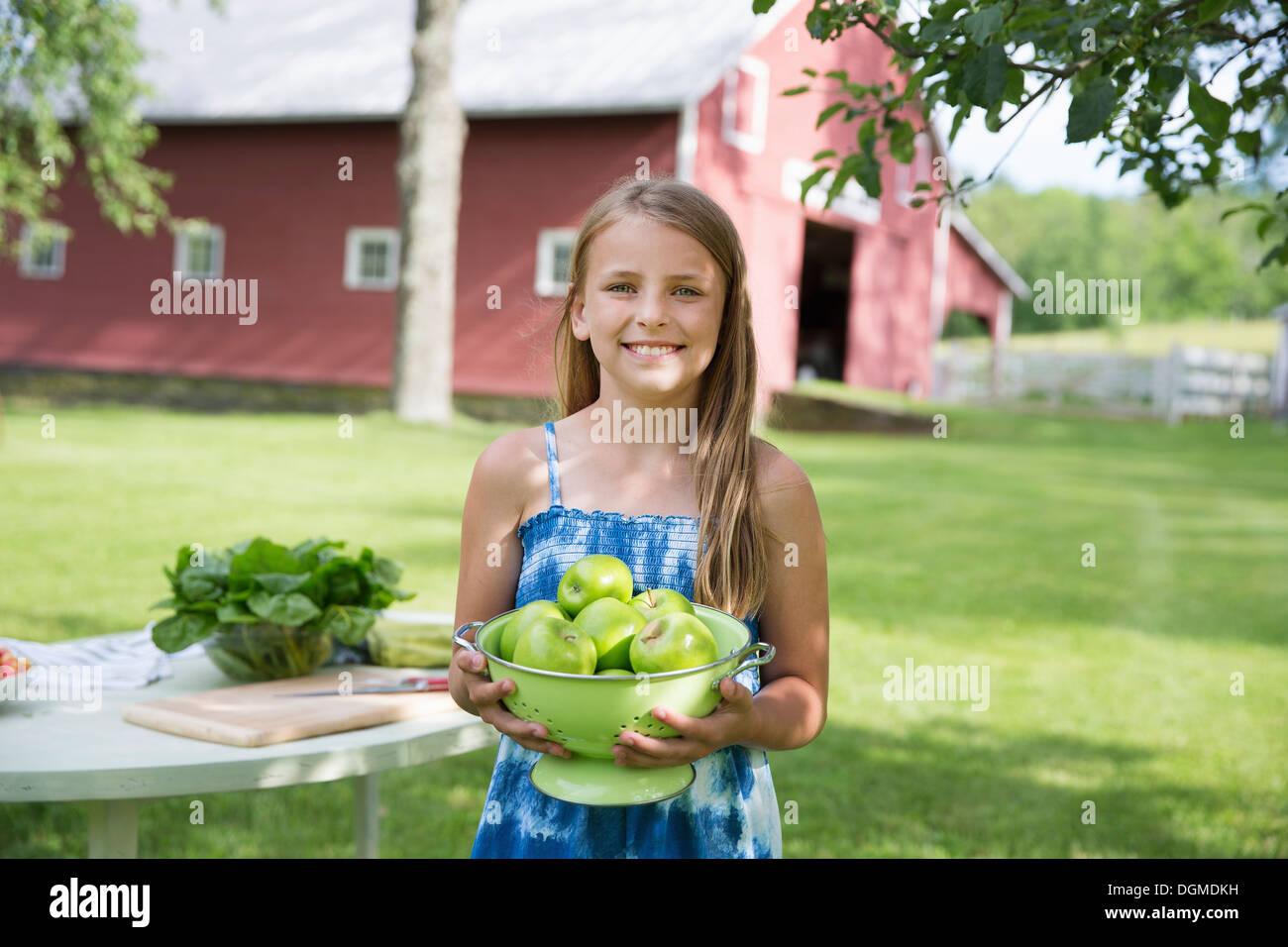 Parte de la familia. Una joven con largo pelo rubio vistiendo un sundress azul, llevando un tazón grande de crujientes manzanas verdes peladas. Imagen De Stock