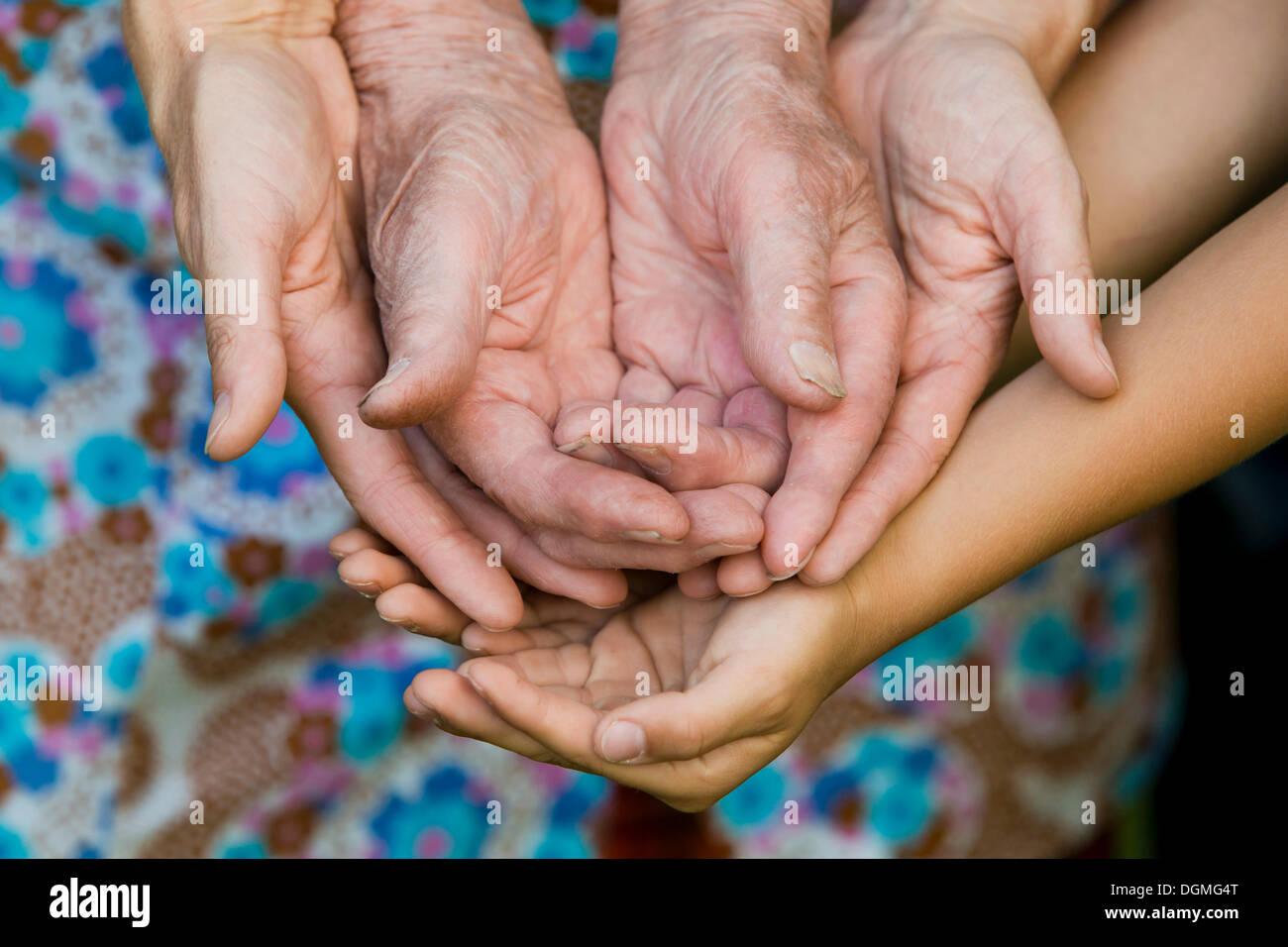 Las manos de un adulto, una anciana y un niño Foto de stock