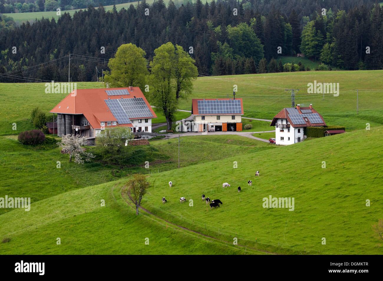 Antigua Granja con dependencias, paneles solares en los techos, Schwarzwald, St.Märgen, Baden-Württemberg, Alemania Imagen De Stock