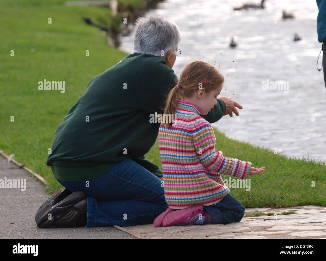 Abuela y nieto de patos, alimentación Bude, Cornualles, en el REINO UNIDO Imagen De Stock