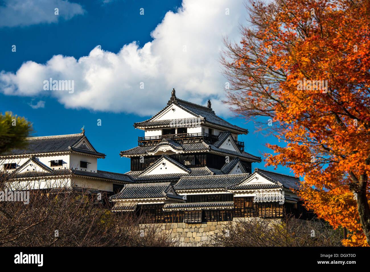 El Castillo de Matsuyama en Matsuyama, Japón. Imagen De Stock