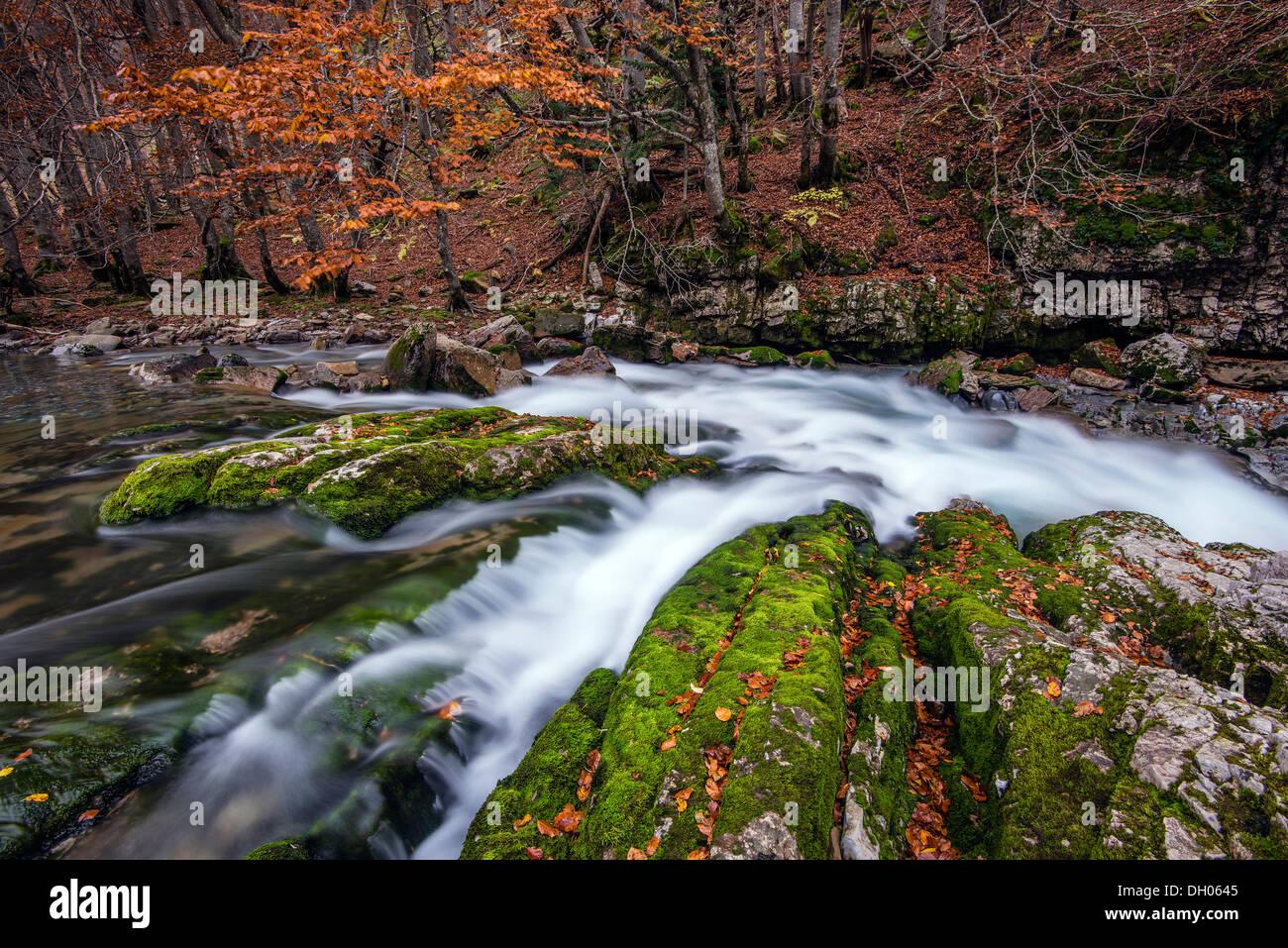 El colorido paisaje de otoño con desenfoque de movimiento río de montaña, el Parque Nacional de Ordesa y Monte Perdido, Huesca, Aragón, España Imagen De Stock