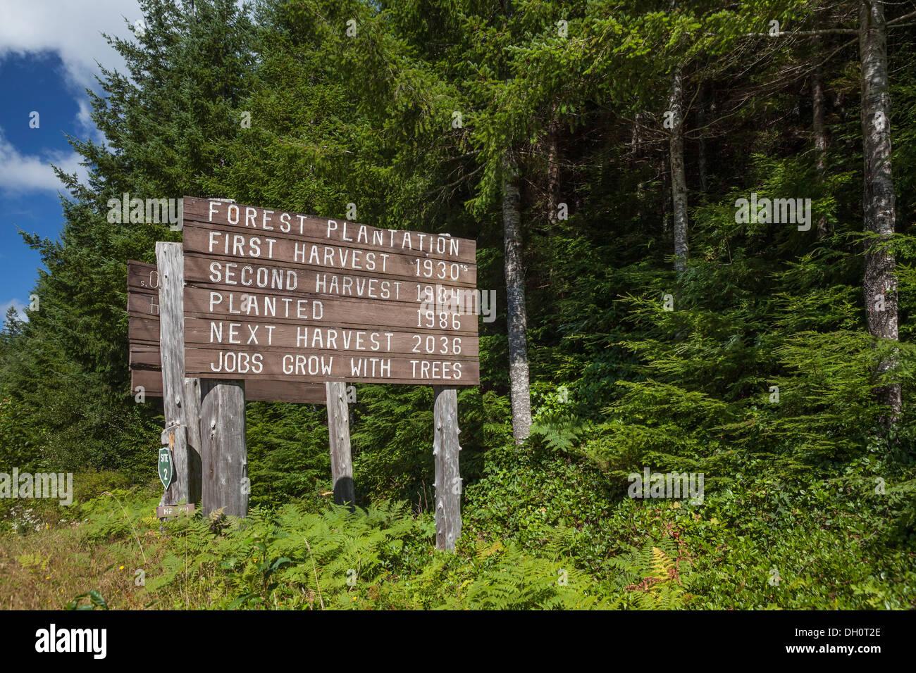 Tree Farm firmar mostrando fechas de cosecha justo en las afueras de Parque Nacional Olímpico, la Península Olímpica, Washington Foto de stock
