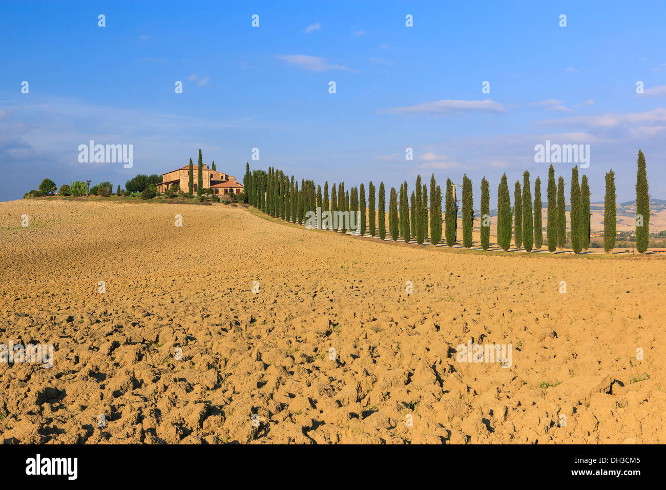 En el corazón de la Toscana, en el campo de la Val d'Orcia, se encuentra el Agriturismo Poggio Covili Imagen De Stock