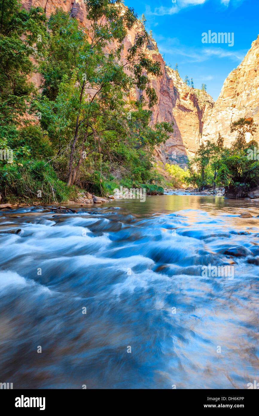 Rapids superficial del Virgin River limita con el Parque Nacional de Zion - Utah Foto de stock