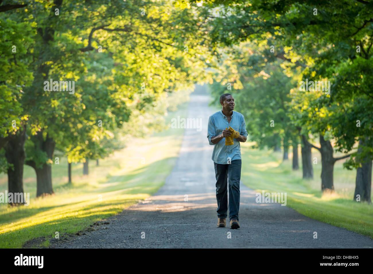 Un hombre caminando por una avenida arbolada en el campo. Imagen De Stock