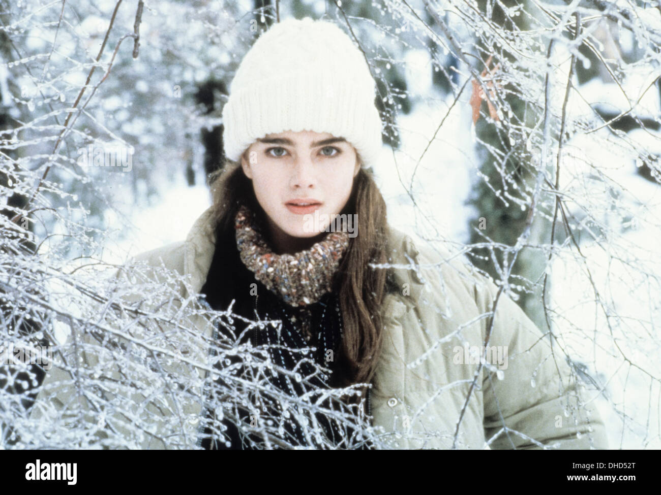 Endless Love 1981 Brooke Shields Imagenes De Stock Endless Love