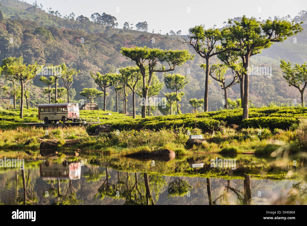 Haputale, reflexiones de un autobús público en un lago en el distrito de Nuwara Eliya, Sri Lanka Hill Country, Sri Lanka, Asia Imagen De Stock