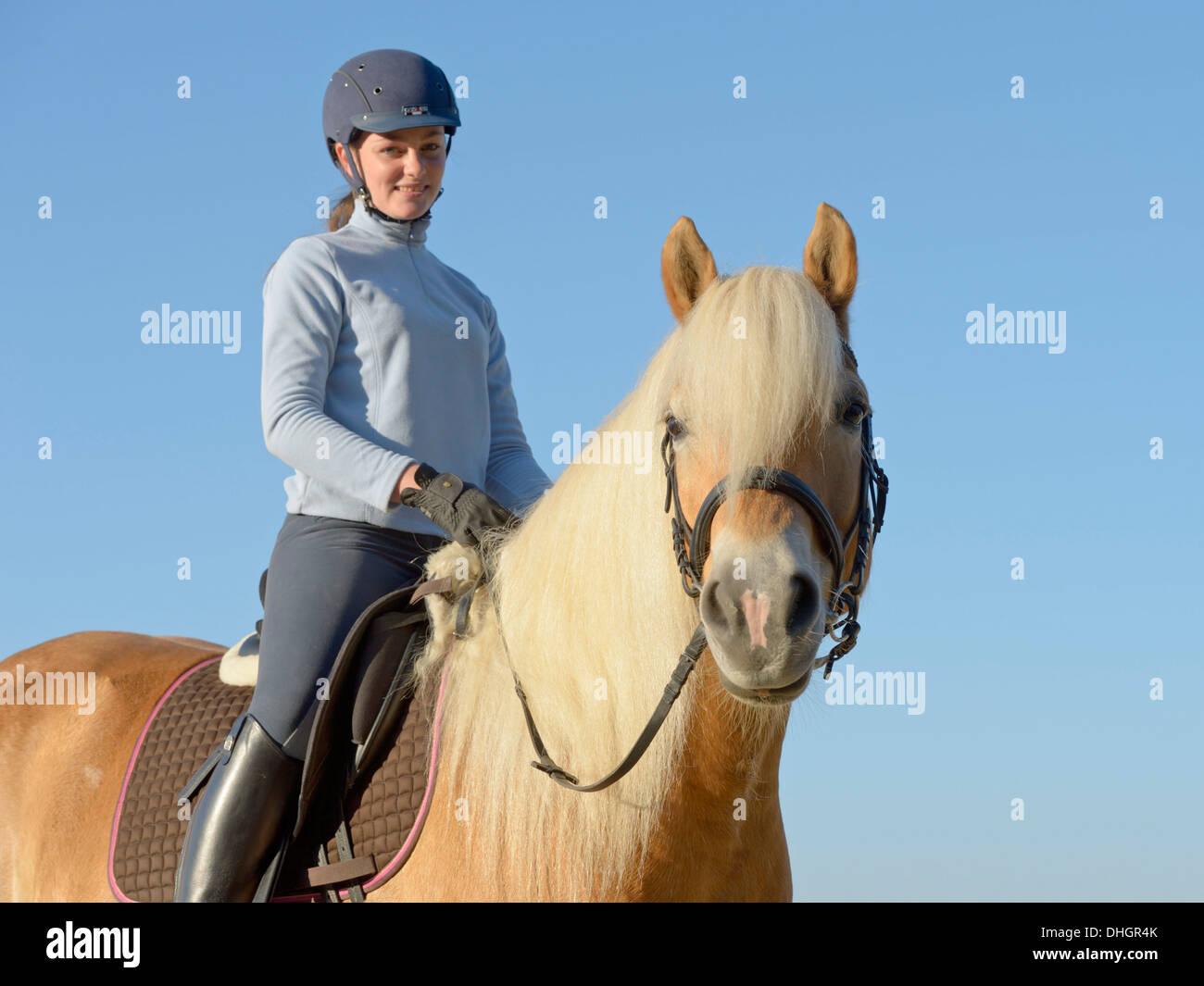 Joven Jinete en la parte de atrás de su caballo Haflinger Imagen De Stock