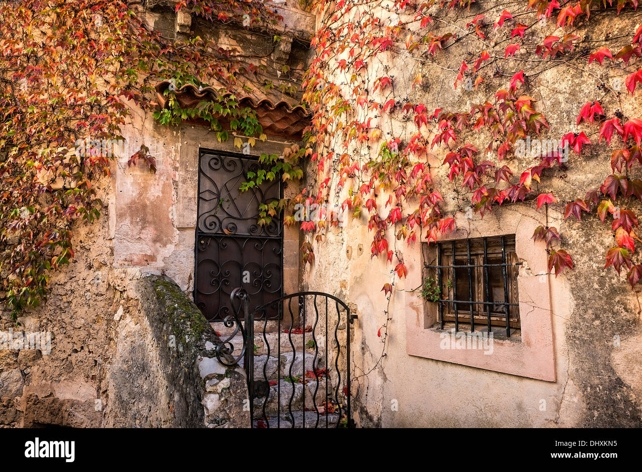 Encantadora fachada rústica y la hiedra, eza, cote d'Azur, Francia Imagen De Stock