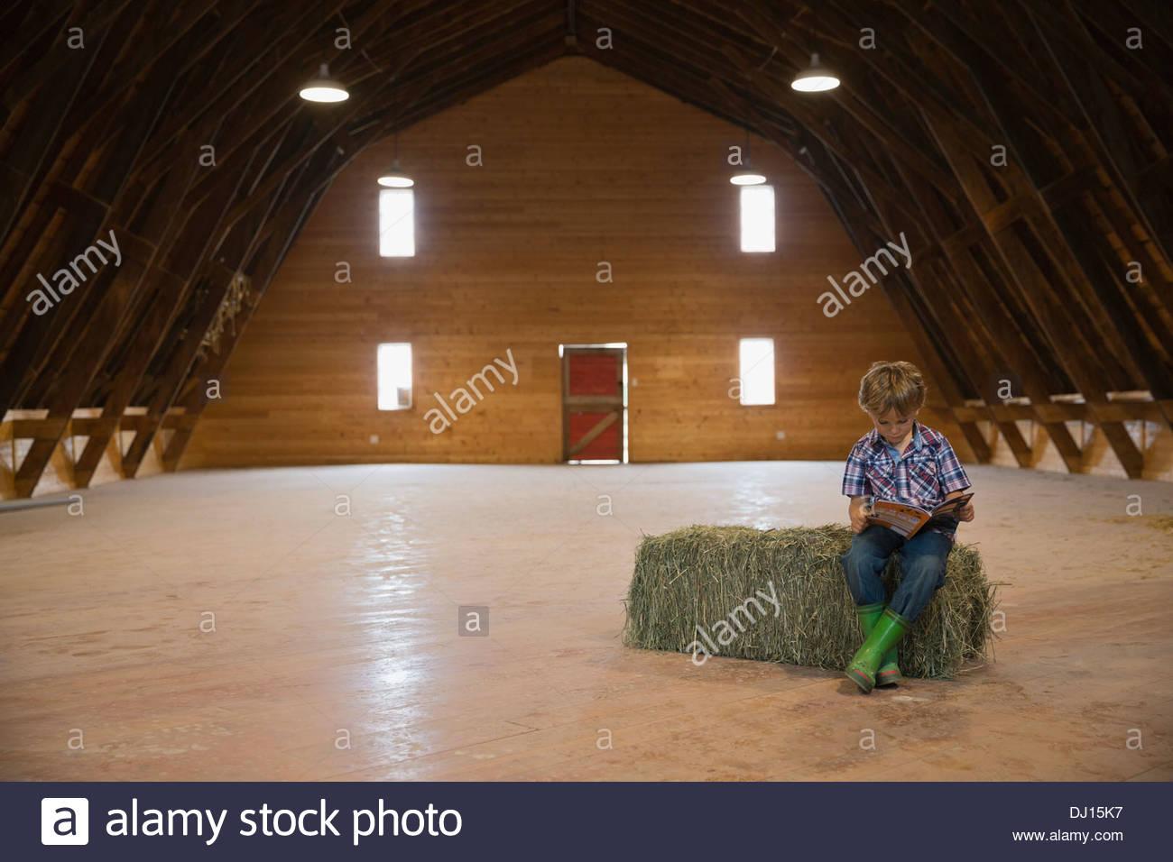 Chico leyendo un libro sobre fardos de heno en el granero Imagen De Stock