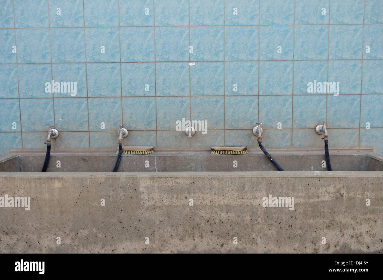 betontrog imágenes de stock & betontrog fotos de stock - alamy