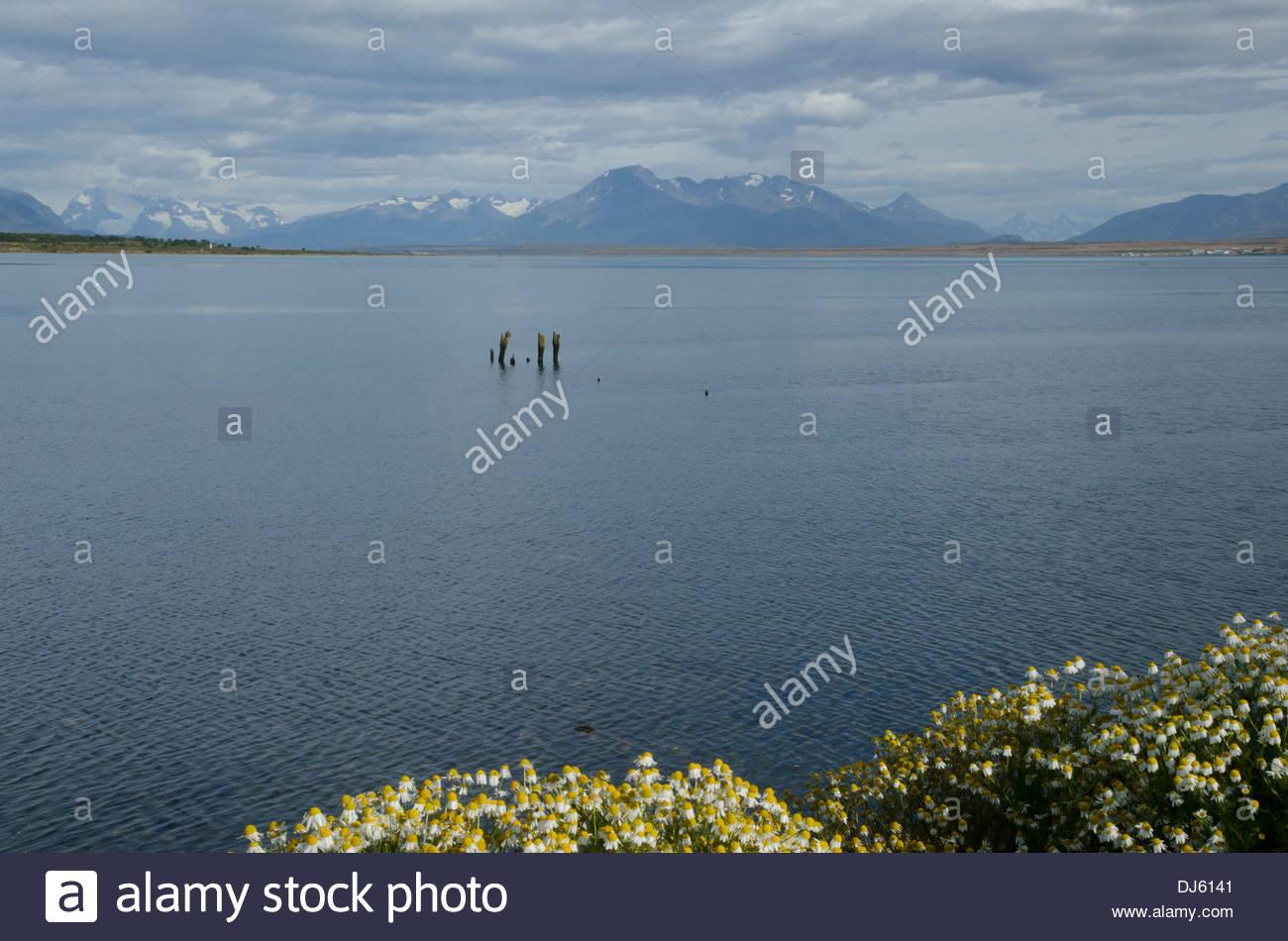 Seno Última Esperanza vista desde Puerto Natales. Imagen De Stock