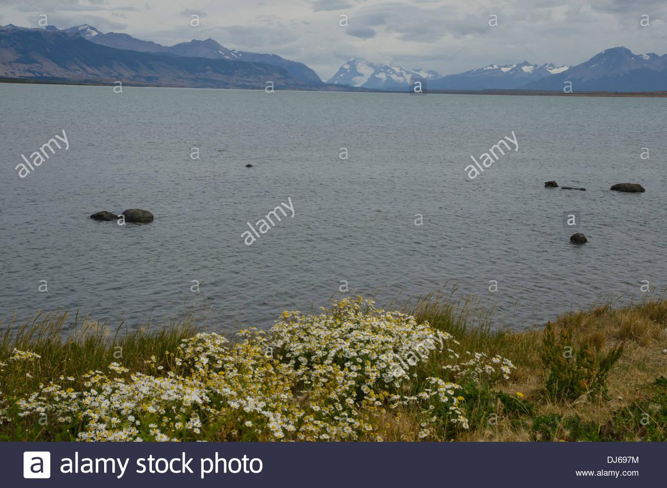 Seno Última Esperanza (desde Puerto Natales). Imagen De Stock