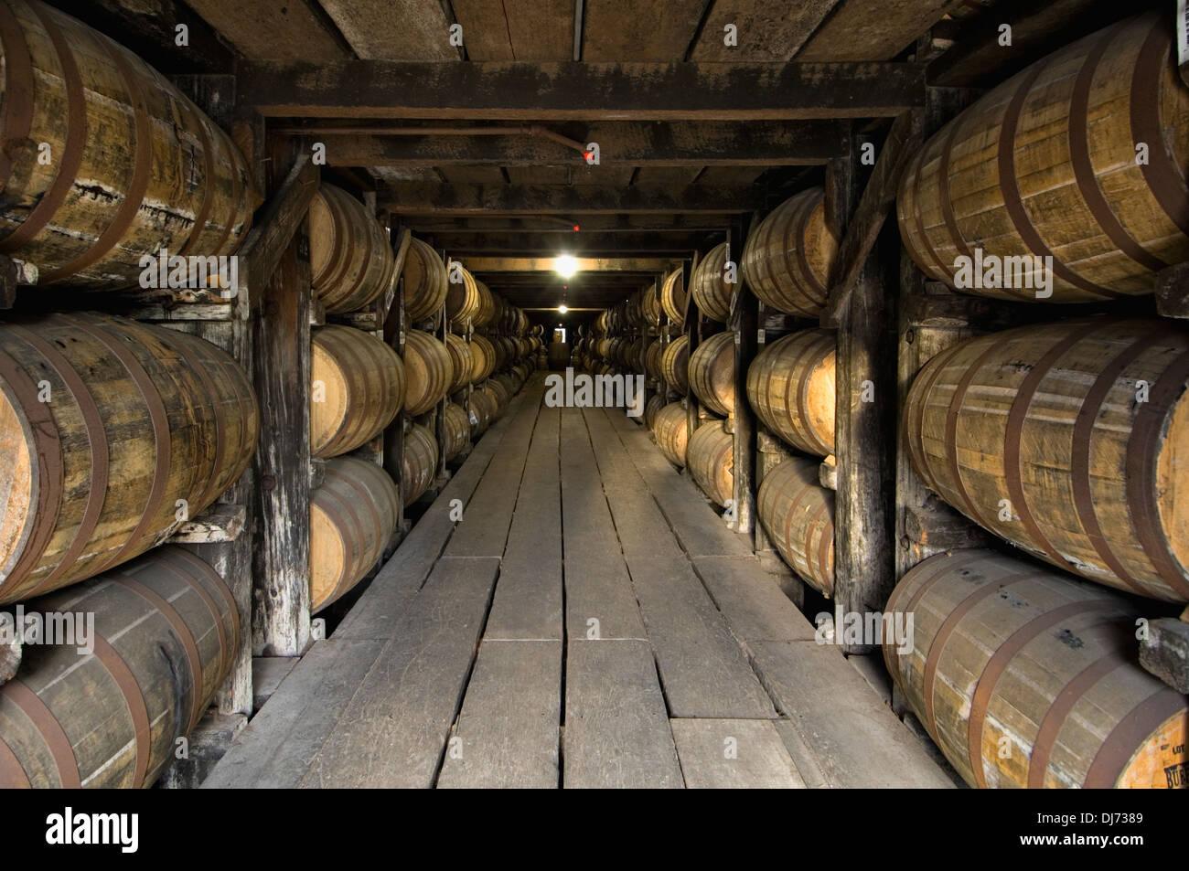 Barriles de Bourbon el envejecimiento en un Rick House en la Destilería Buffalo Trace en Frankfort, Kentucky Imagen De Stock