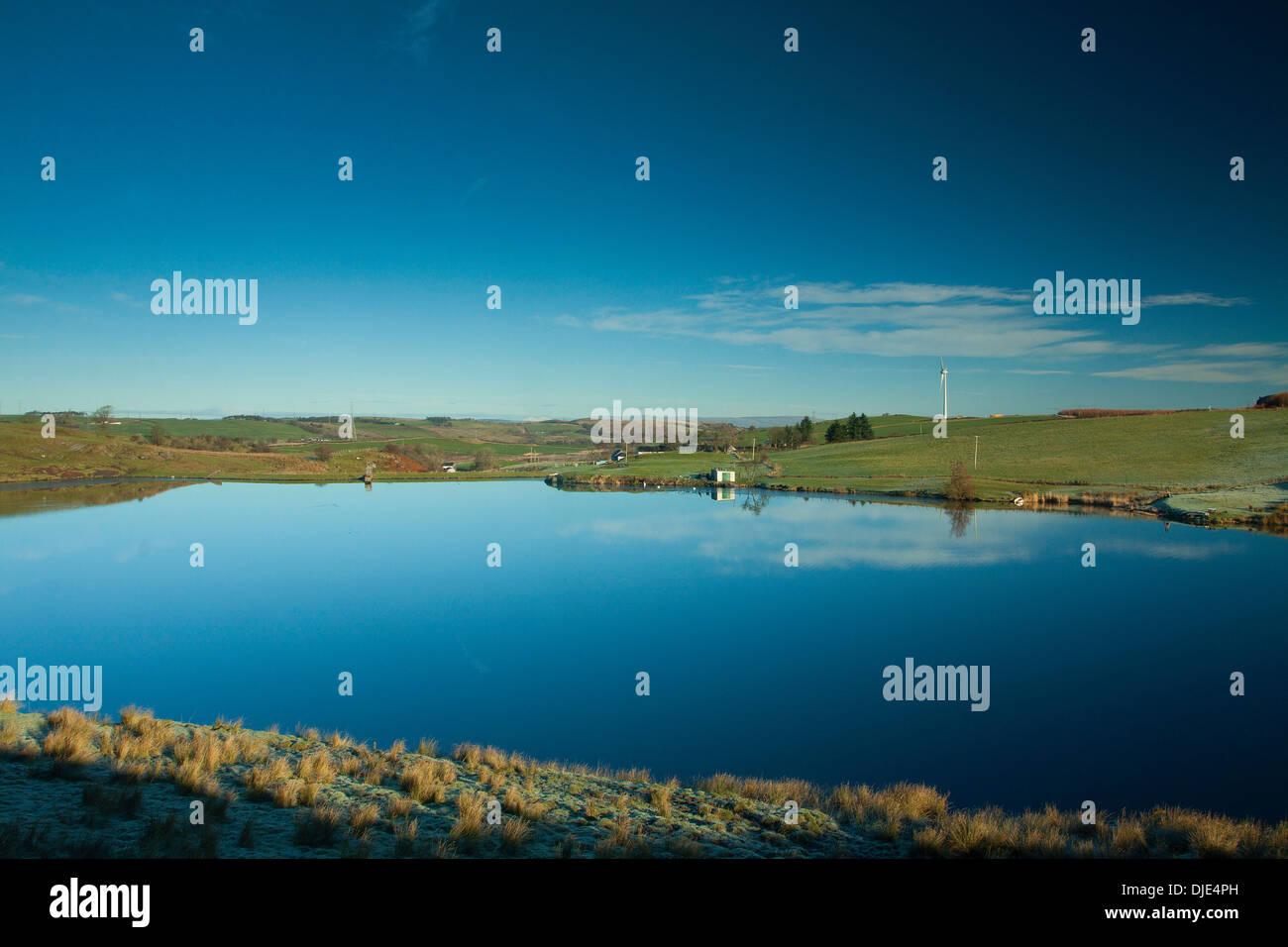 Almohadilla de Commore Neilston Dam, Neilston, East Renfrewshire Imagen De Stock