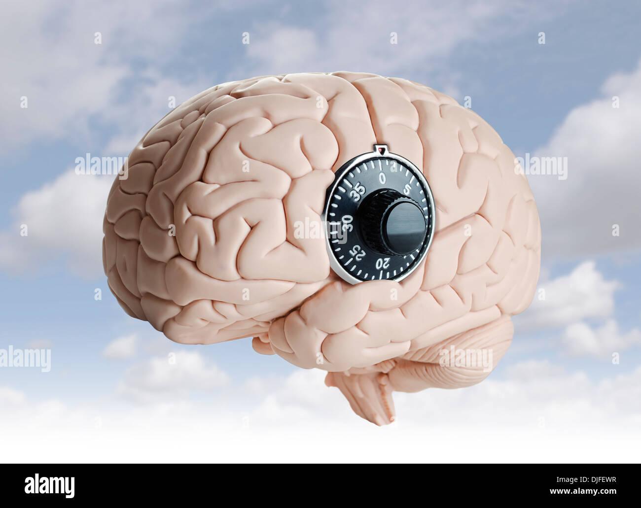 Modelo del cerebro humano con un dial LOCK Imagen De Stock