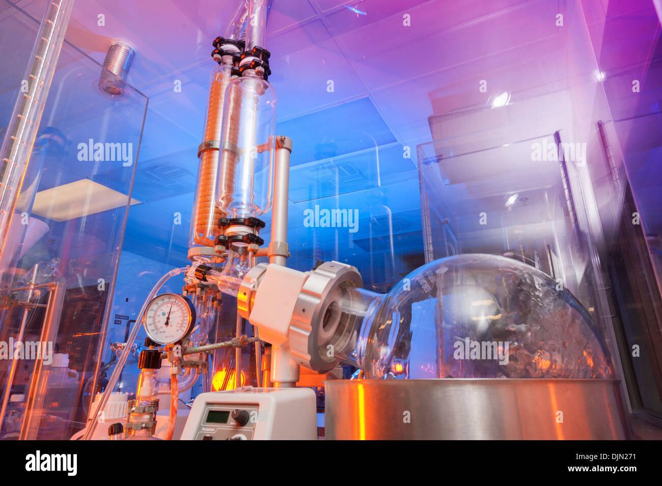 Científicos del laboratorio de biotecnología Imagen De Stock