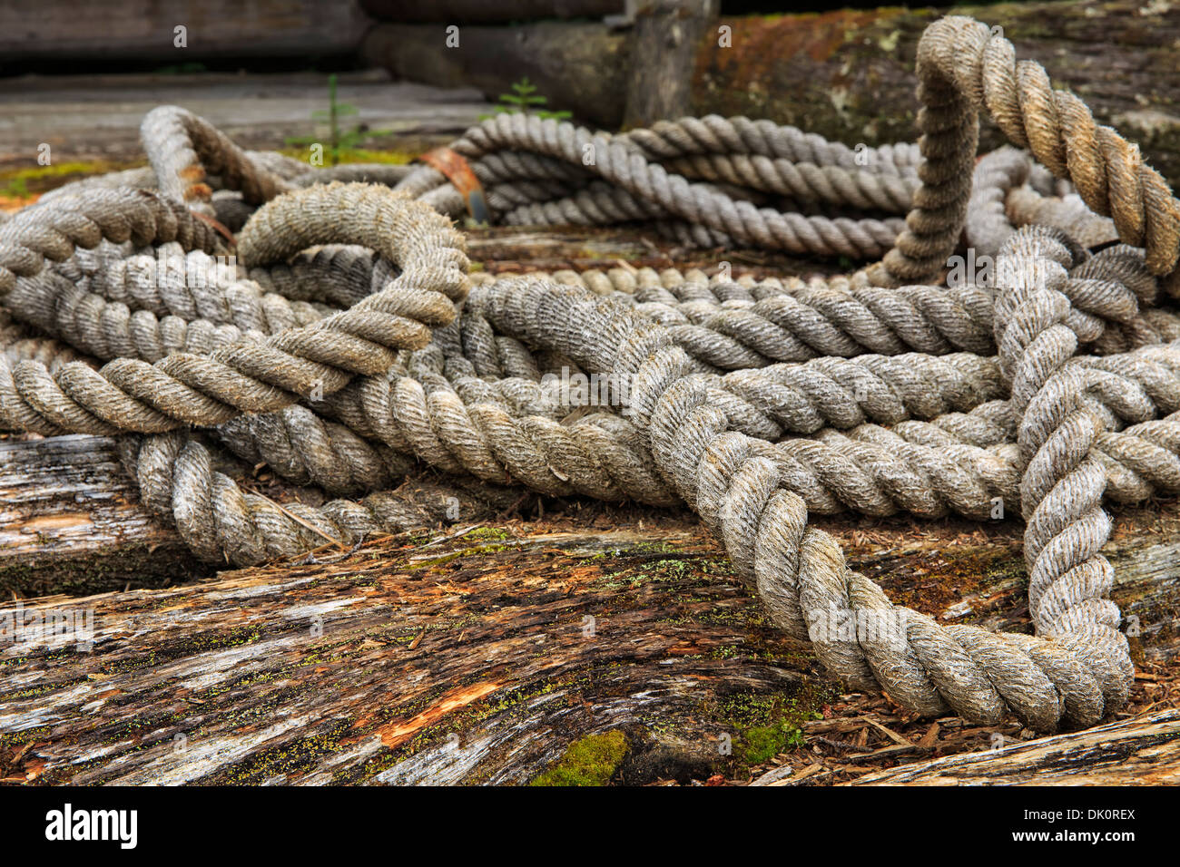 Vintage cuerda en el Algonquin Logging Museum, Algonquin Provincial Park, Ontario, Canadá Imagen De Stock