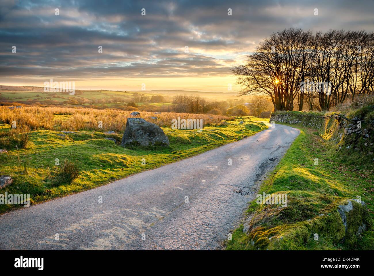 Un Carril del país conduce a través de Bodmin Moor en Cornwall. Imagen De Stock