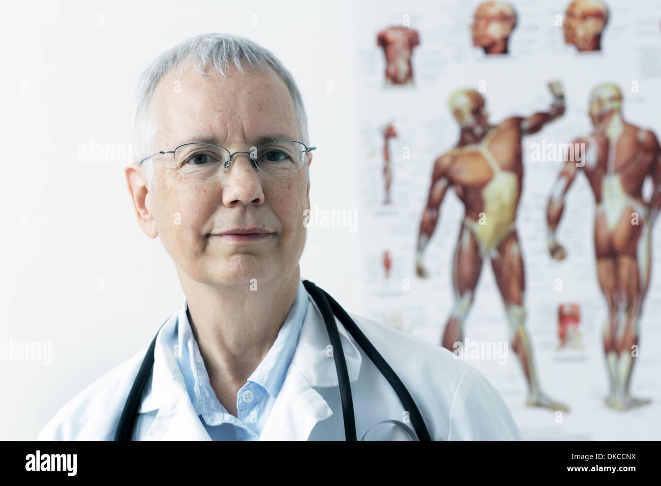 Una mujer doc con un músculo humano persona póster en el fondo, Imagen De Stock