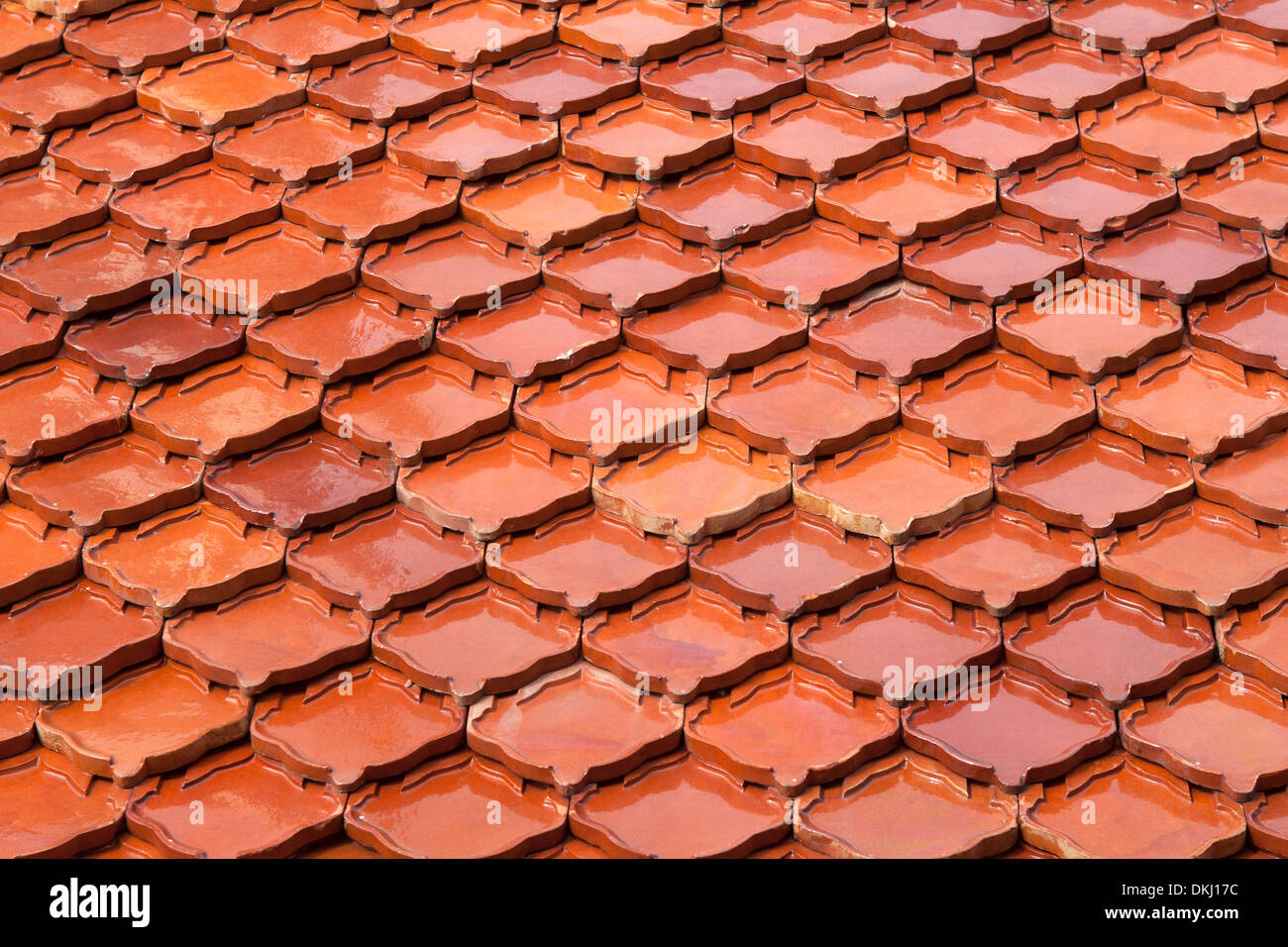 La Textura Del Techo De Color Marron En El Templo De La Azotea - El-color-marron