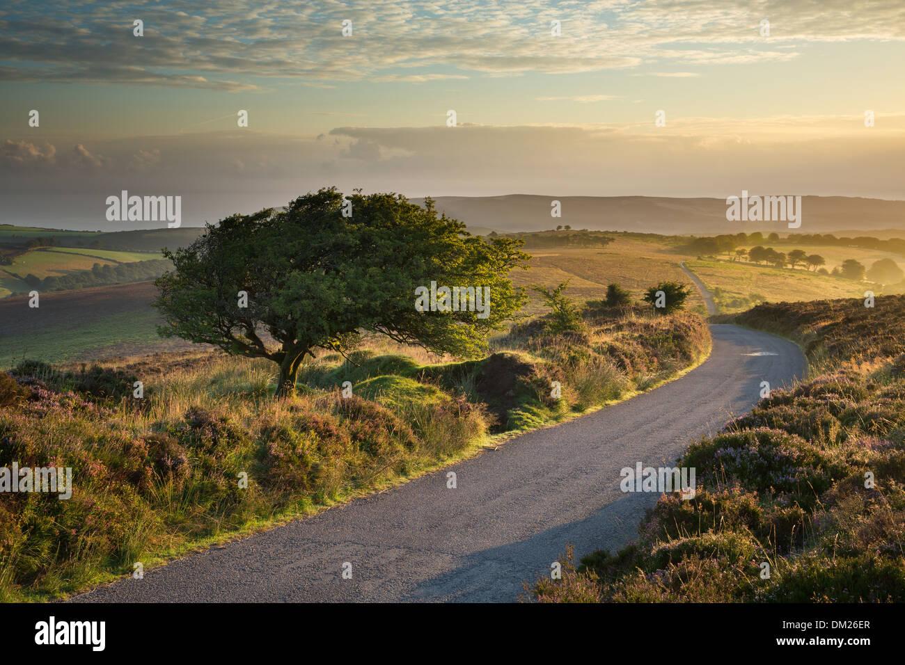 La carretera sobre Stoke pero común, Colina Dunkery Exmoor National Park, Somerset, Inglaterra, Reino Unido. Imagen De Stock