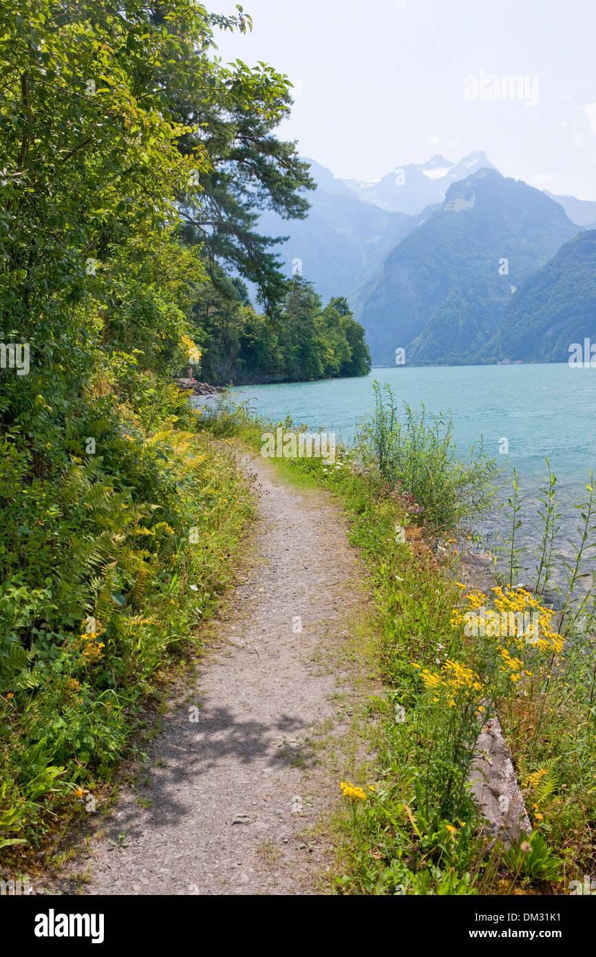 Suiza, Europa, el lago de Lucerna, en el centro de Suiza, en el cantón, UR, Uri, familia, camino de Suiza, el lago de Uri, Imagen De Stock