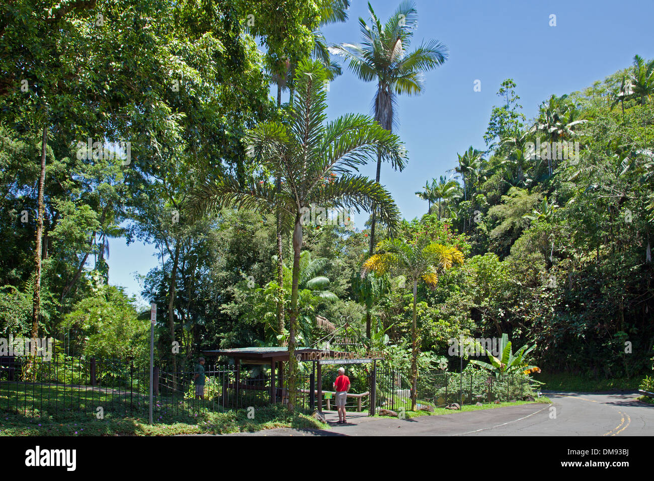 Entrada al jardín botánico tropical de Hawaii, el recorrido saliendo de la Highway 19, al norte de hilo. Foto de stock