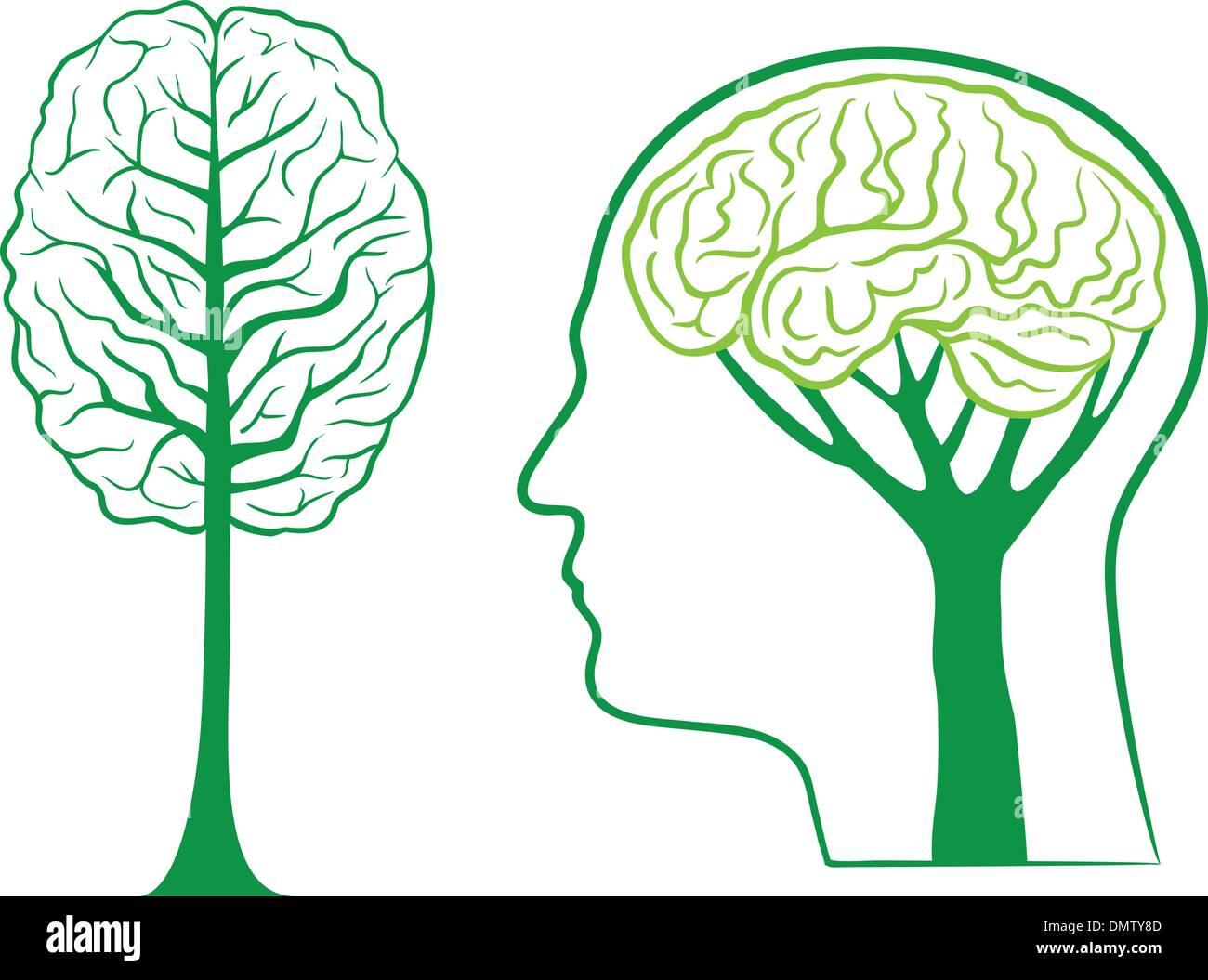 Cerebro, vector árbol verde Imagen De Stock