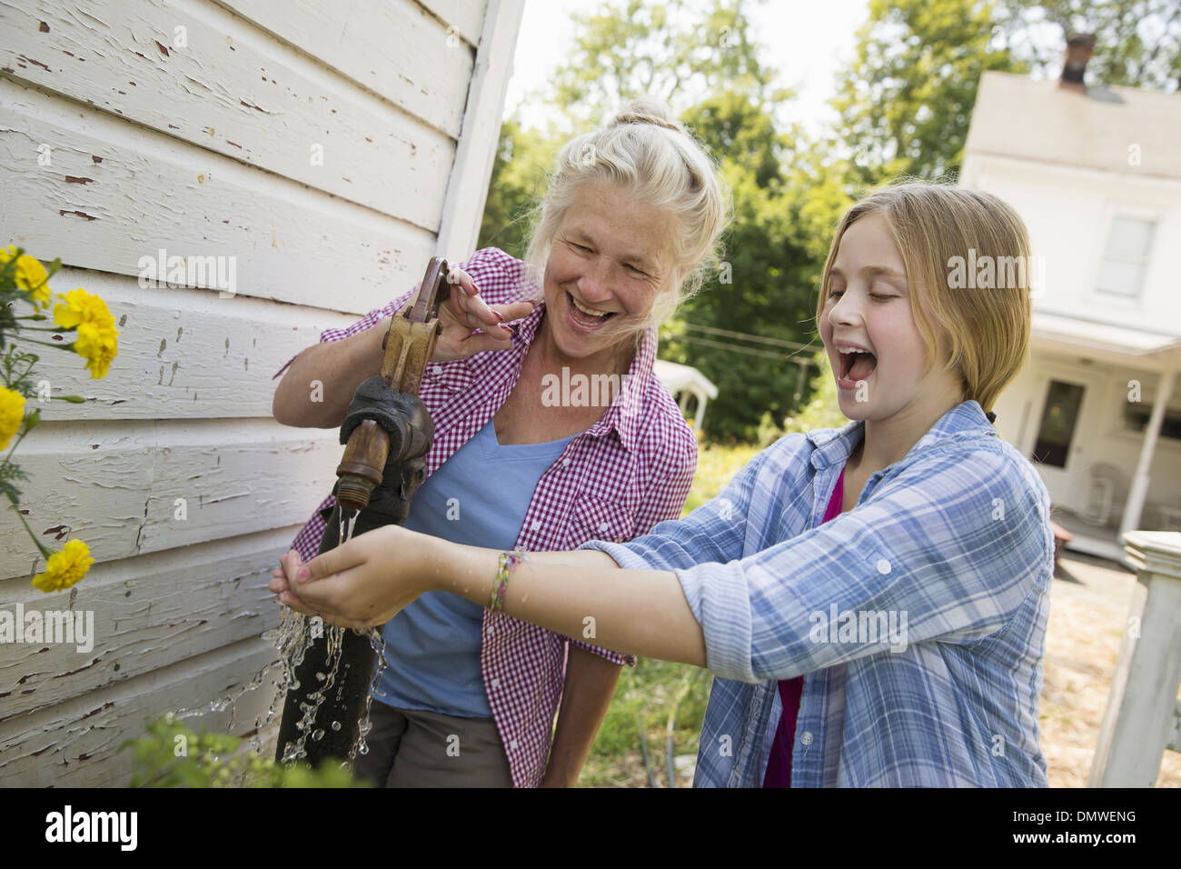 Una familia verano garing en una granja. Una comida compartida de un regreso. Imagen De Stock