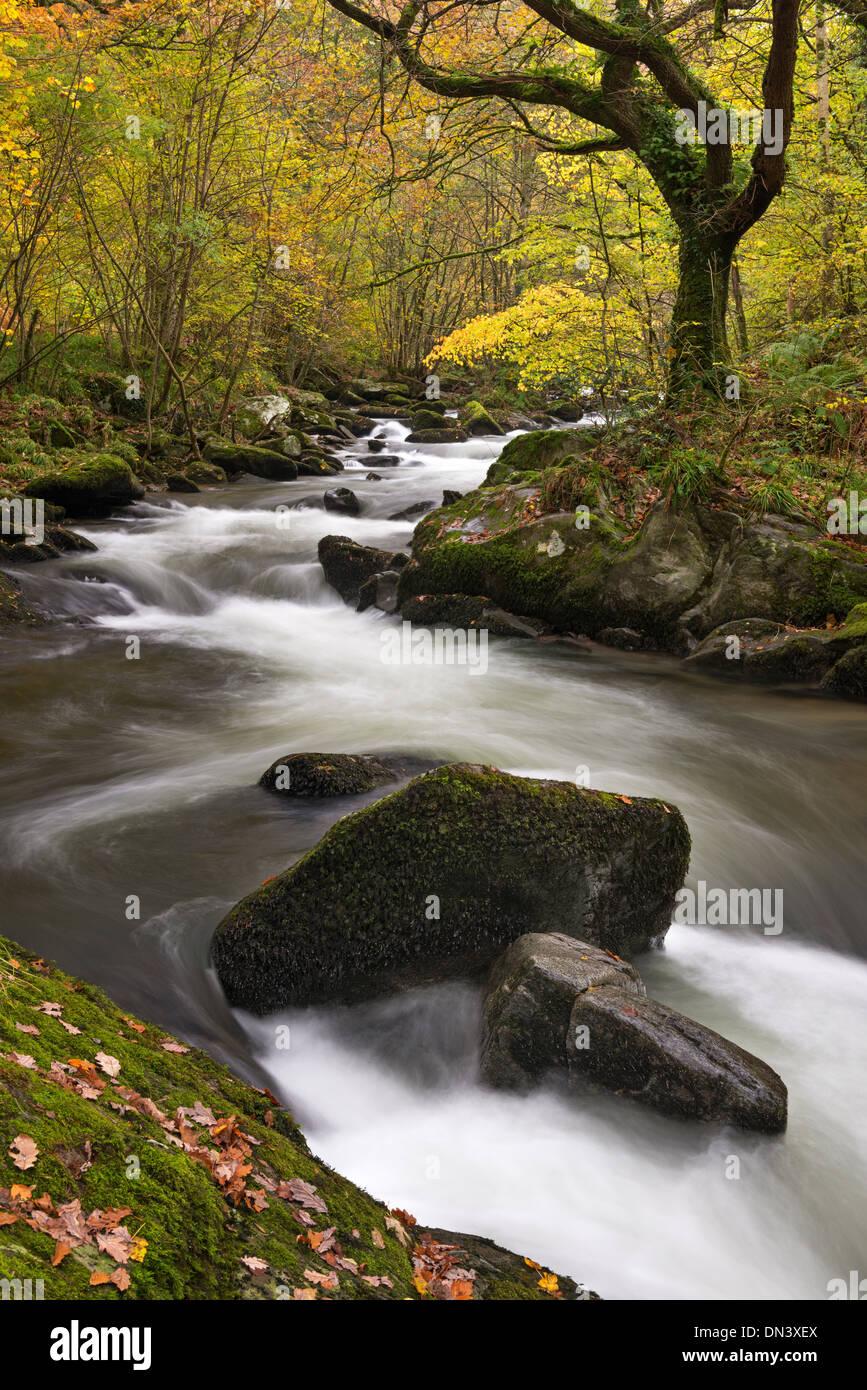 East Lyn River en Watersmeet, Exmoor, Devon, Inglaterra. Otoño (Noviembre) de 2013. Imagen De Stock