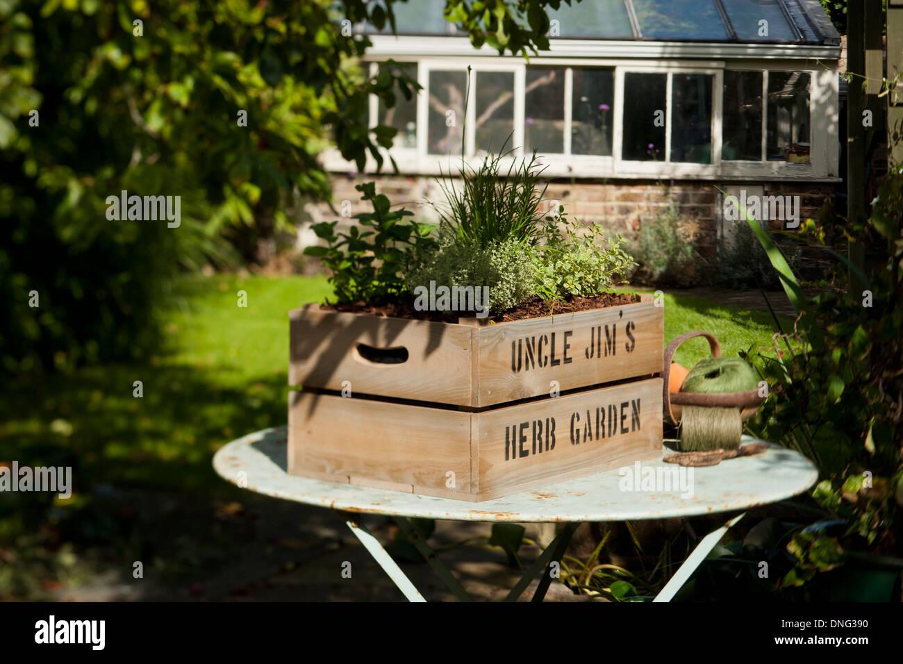 Uncle Jim's Jardín de Hierbas; personalizada caja de madera llena de tierra. Varias hierbas creciendo. Imagen De Stock