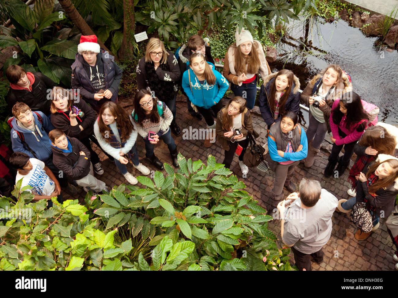 Los escolares alemanes en un viaje escolar mirando un cacao bush, el museo del chocolate Lindt, Colonia (Köln), Imagen De Stock