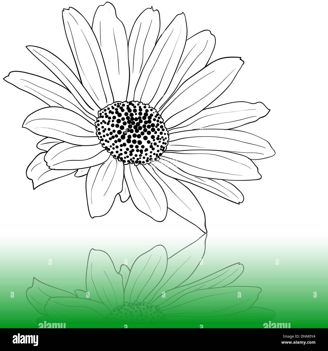 Dibujadas a mano ilustración vectorial Imagen De Stock