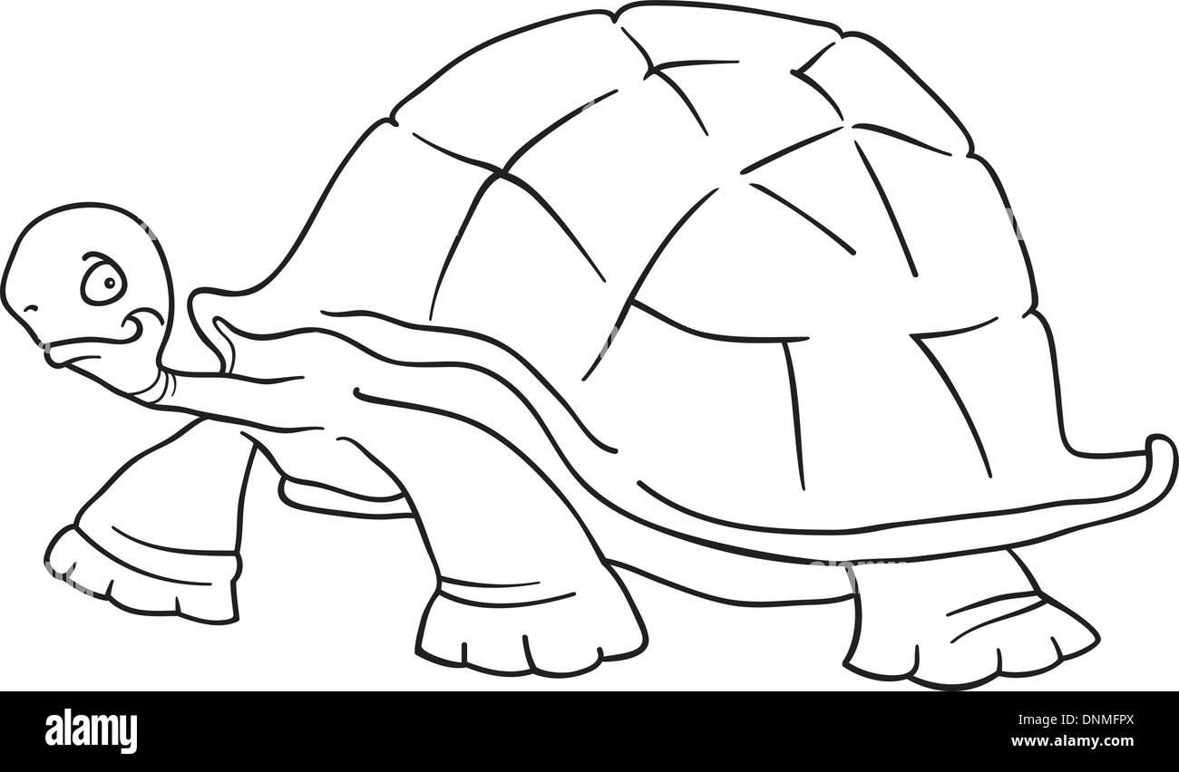 Ilustración Vectorial De Dibujos Animados De Gracioso Gran Tortuga
