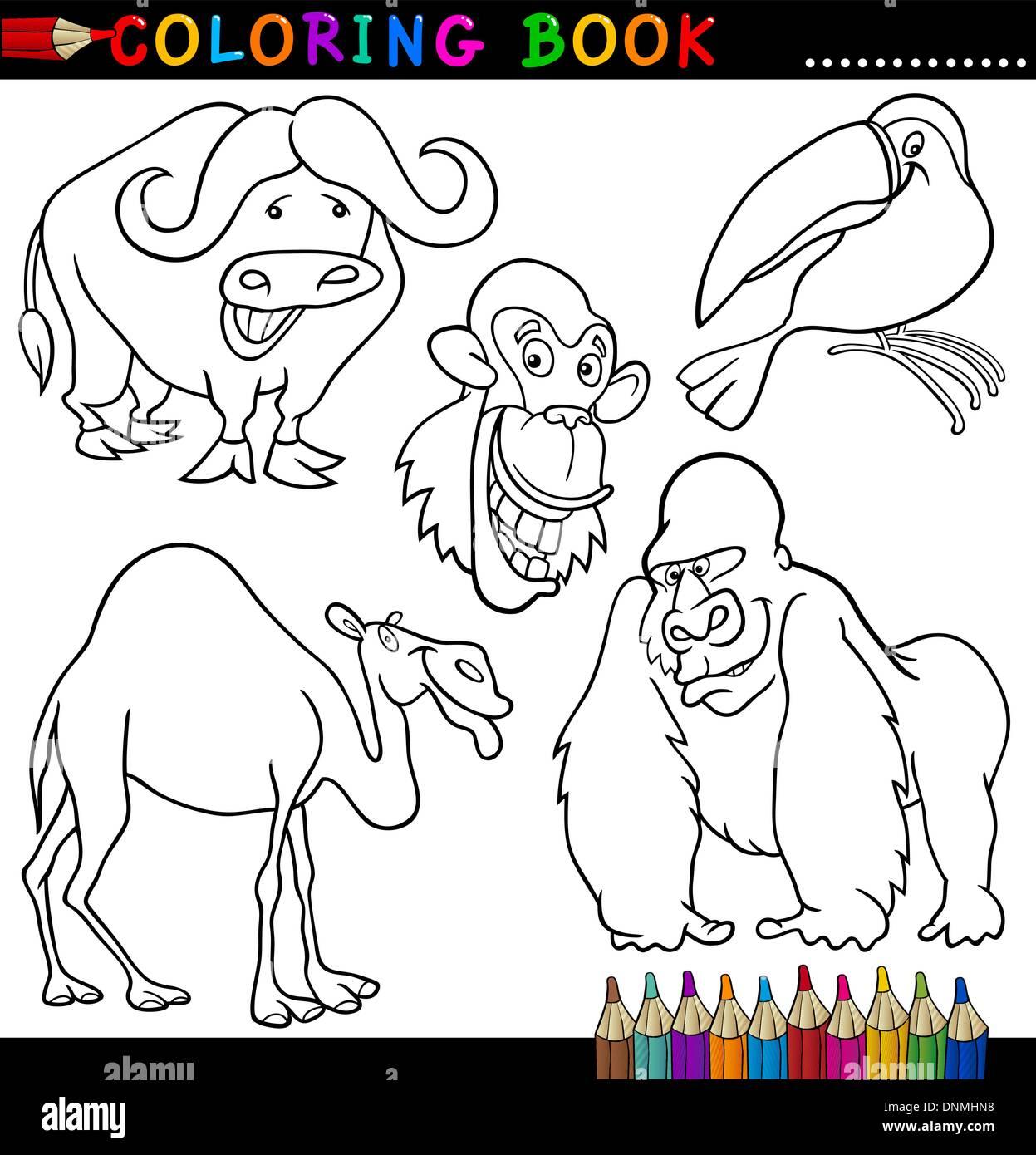 Libro Para Colorear O Página Cartoon Ilustración De