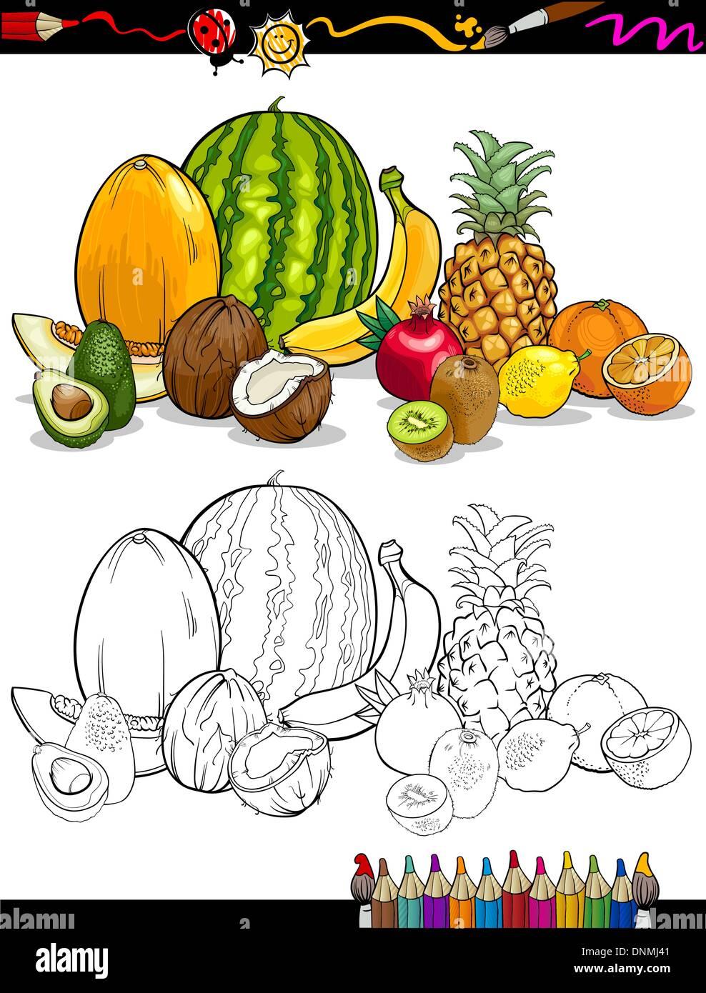 Libro Para Colorear Dibujos Animados Página O Ilustración De Frutas