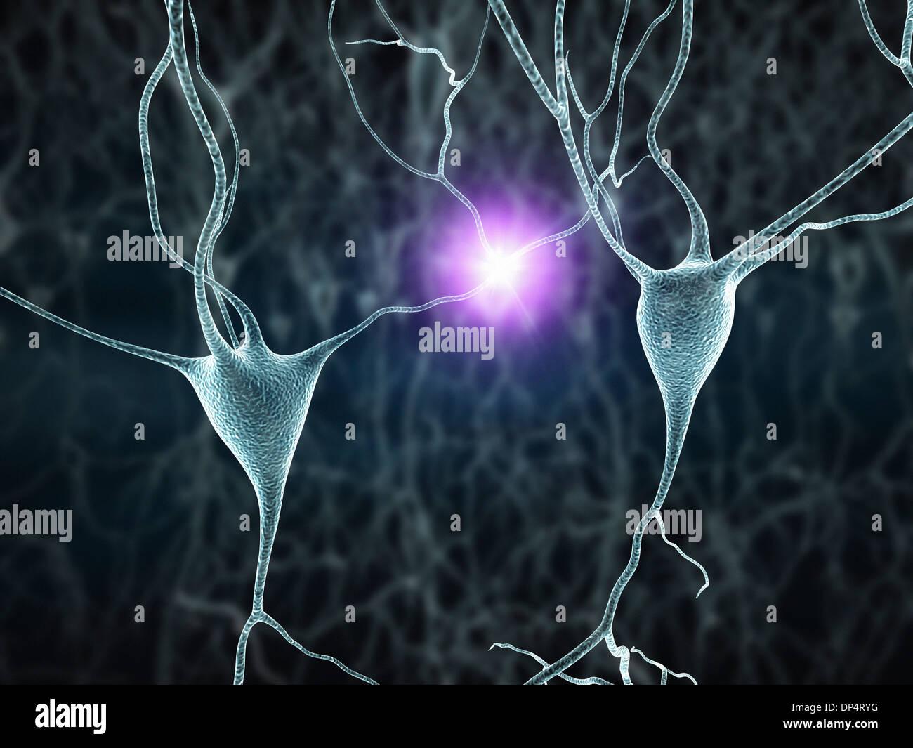 Las células nerviosas, las ilustraciones Imagen De Stock