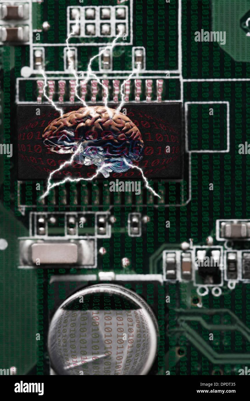 Foto de estudio del cerebro conectada a la tecnología de datos Foto de stock