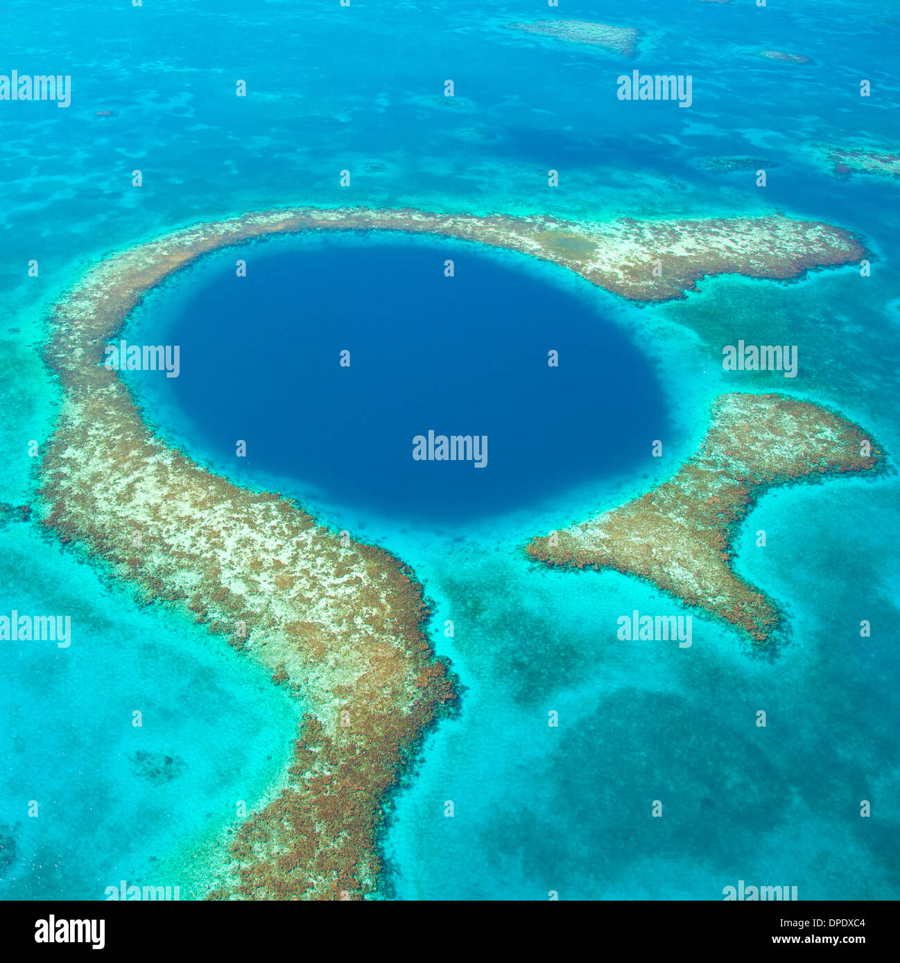 El Blue Hole Blue Hole National Monument, Belice Mar Caribe Arrecife Lighthouse Reef Atoll agujero de 400 pies en Arrecife Imagen De Stock