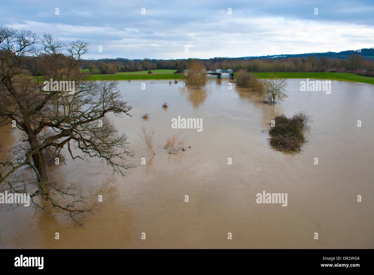 Leigh, Tonbridge, Kent, UK. El 18 de enero de 2014. La barrera contra inundaciones Leigh, cerca de Tonbridge, fue construido en el año 1982 reduce el riesgo de inundaciones en Tonbridge. Las puertas se han cerrado parcialmente para permitir que el agua se acumule en la zona de almacenamiento. © Patrick nairne/Alamy Live News Foto de stock