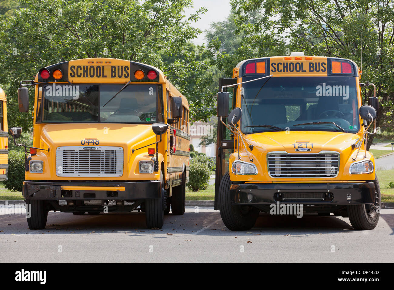 Nos estacionados los autobuses escolares - Pennsylvania, EE.UU. Imagen De Stock