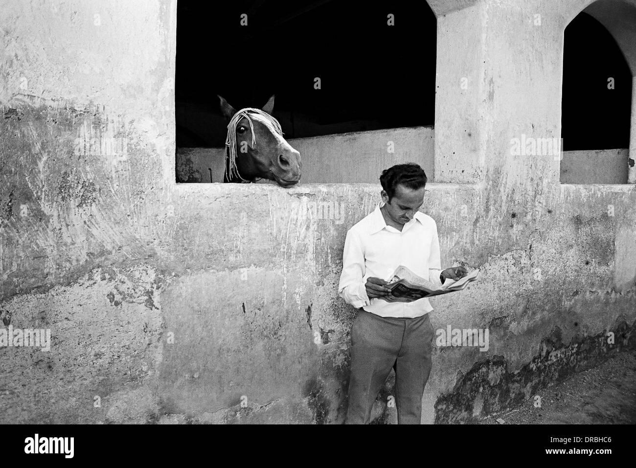 El hombre y el caballo la lectura de periódicos Racecourse Mumbai Maharashtra India Asia 1974 Imagen De Stock