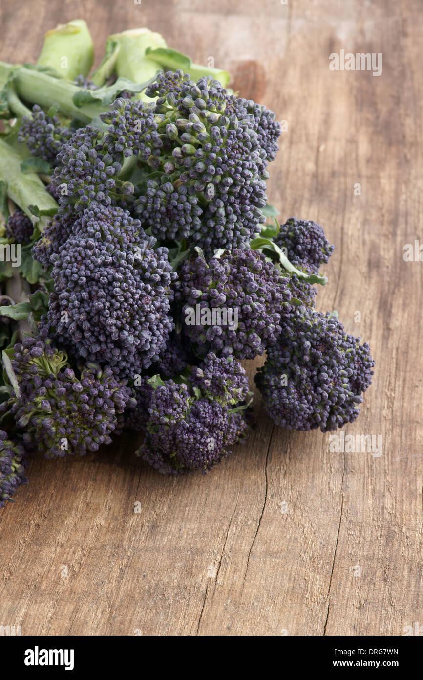 Purple Sprouting Broccoli un alto en nutrientes vegetales Imagen De Stock
