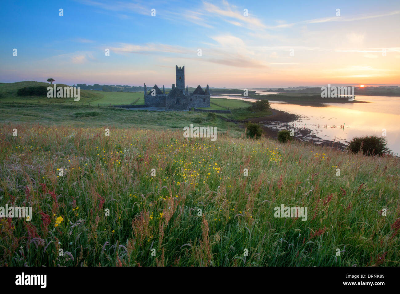 Amanecer en verano Rosserk Abbey, el Río Moy, en el condado de Mayo, Irlanda. Imagen De Stock