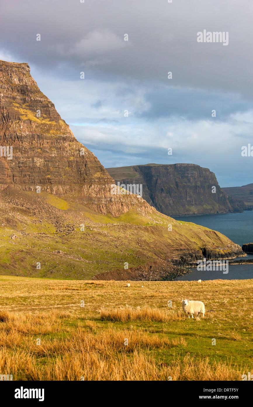 Una vista hacia Ramasaig Waterstein Head y acantilados, Moonen Bay, Isla de Skye, Inner Hebrides (Escocia, Reino Foto de stock